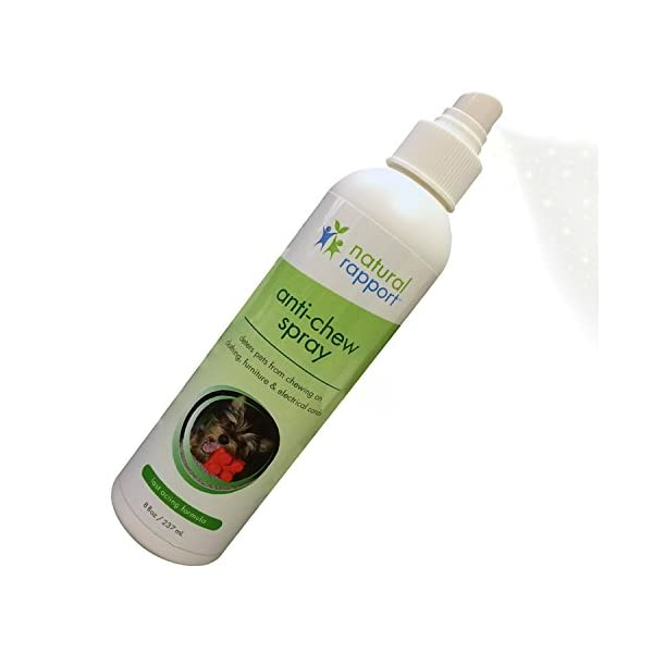 Natural Rapport Anti-Chew Dog Repellent Spray - Stops Destructive Chewing - Safe for Pets - Effective Dog Training Tool for Puppies and Dogs of All Sizes - 8 fl oz (236 mL) 1