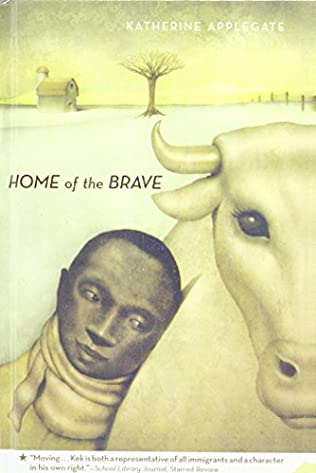 book cover of Home of the Brave