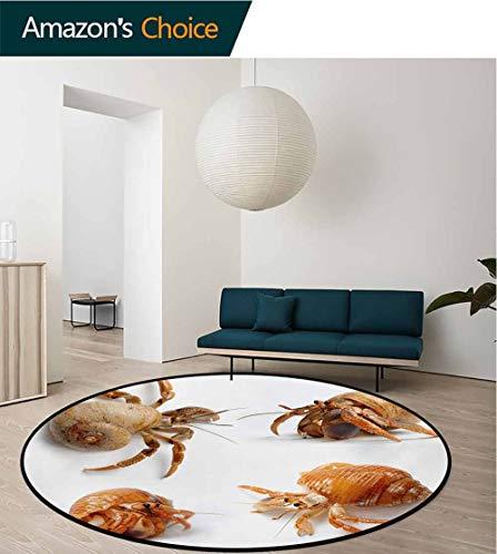 (RUGSMAT Crabs Modern Machine Round Bath Mat,Sea Animals Theme Hermit Crabs Pattern from Caribbean Seascape Digital Print Non-Slip No-Shedding Kitchen Soft Floor Mat,Round-39 Inch Marigold and White)