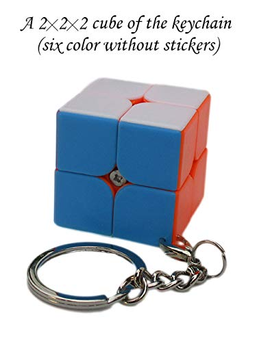 Aŭtuno Cubes, a 2x2x2 Cube of Keychains, Turn Puzzles, Puzzles, The Flat Ring Keychain with Silver Colored Metals (Four Colour Without Stickers)