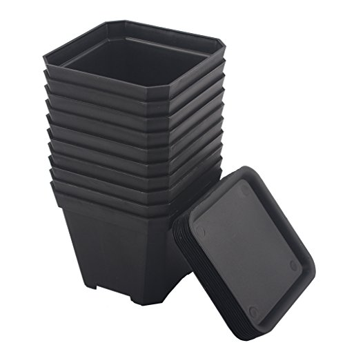 BangQiao 3.90 Inch Plastic Flower Pots for Plants,Cutting,Seedlings, Pack of 10 - Nursery Pot Square