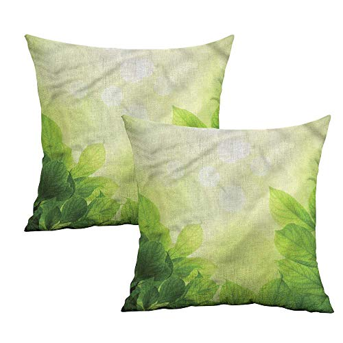 Khaki home Green Square Funny Pillowcase Beech Leaves Ecology Growth Square Personalized Pillowcase Cushion Cases Pillowcases for Sofa Bedroom Car W 24
