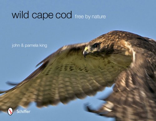 Download Wild Cape Cod: Free by Nature ebook