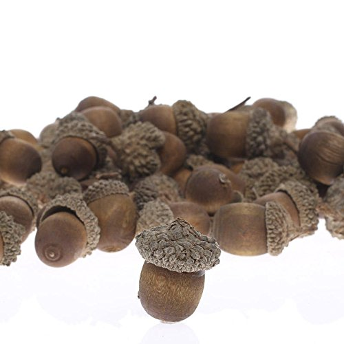 Factory Direct Craft Nutty-Brown Artificial Acorns with Natural Acorn Caps for Thanksgiving Table Decoration, Fall Crafting, and Autumn -