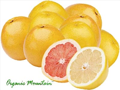 Organic Grapefruit by Organic Mountain