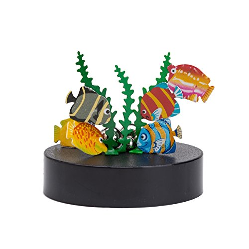 (THY COLLECTIBLES Magnetic Sculpture Desk Toy For Intelligence Development Stress Relief Strong Magnet Base Solid Metal Pieces (Fish))