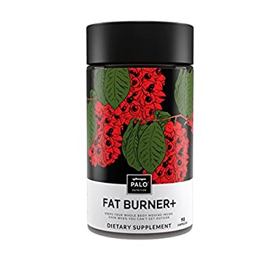 Fat Burner+ - Appetite Suppressant and Weight Loss Supplement, Made of Pure HCA Extract from Garcinia Cambogia, Green Tea Extract, and DMAE