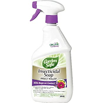 Garden Safe Insecticidal Soap Insect Killer (Ready-to-Use) (HG-10424X) (24 fl oz)
