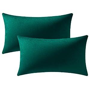 DEZENE Housses de Coussin de Canapé Vert: Lot de 2 Taies d'oreiller Rectangulaires en Velours Doux Solide de 30 cm x 50…