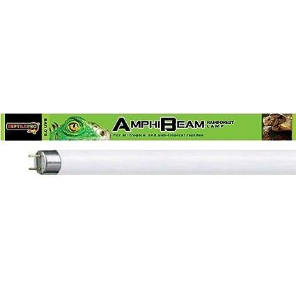 Reptilepro, lampada UV fluorescente AmphiBeam da 5.0 UVB ideale per terrari e rettili, ricrea ambienti tropicali da foresta pluviale