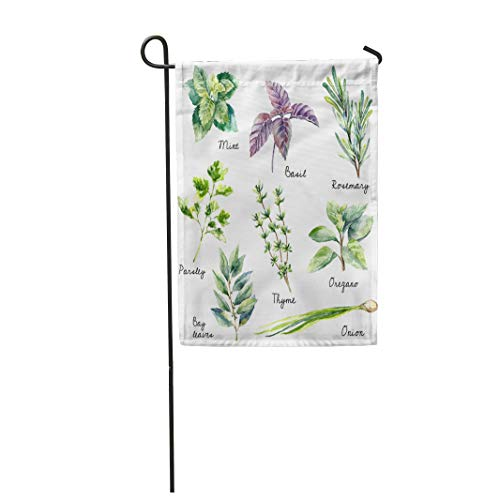 Semtomn Garden Flag 12x18 Inches Print On Two Side Polyester Watercolor Collection of Fresh Herbs Mint Basil Rosemary Parsley Oregano Home Yard Farm Fade Resistant Outdoor House Decor Flag]()