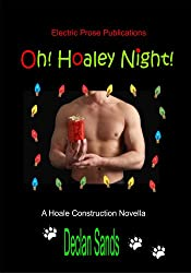 Oh! Hoaley Night [Gay Mystery Romance MM] (Hoale Construction Mysteries Book 4)