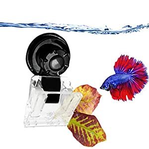"""Catappa Leaf Clip (1 pc) - Compact 4"""" x 2"""" Veggie or Catappa Leaf Holder - Secure, Removable Suction Cup Base with Clear Clamp - Improve Health of Betta, Goldfish, Guppy, Shrimp and Freshwater Fish 28"""