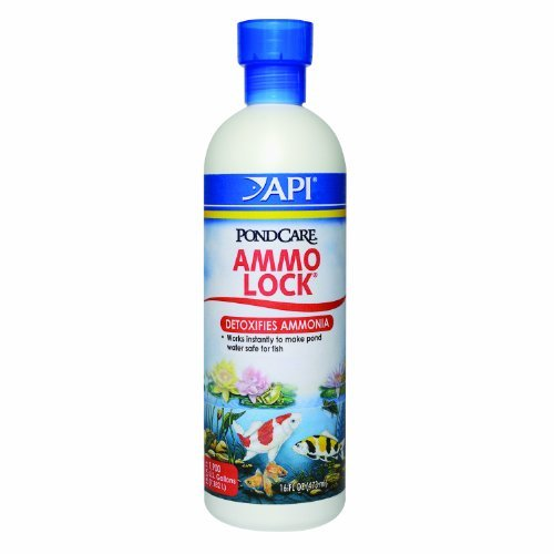 API Pondcare Ammo-Lock Ammonia Detoxifier, 16-Ounce by (Aquarium Pharmaceuticals Ammo Lock)