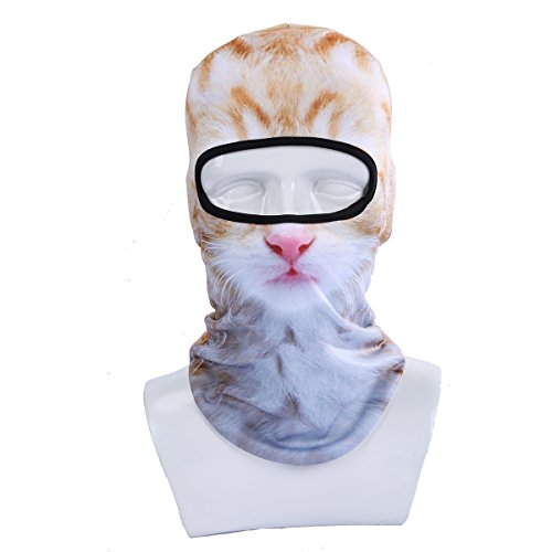 Winter Motorcycle Balaclava Outdoor Costume