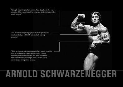 Motivational Arnold Schwarzenegger Various Quotations Gym