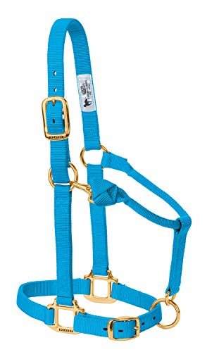 Weaver Leather Original Adjustable Nylon Horse Halter, Hurricane Blue, Arabian/Cob ()