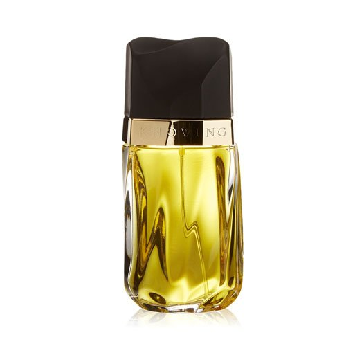 KNOWING - Estee Lauder EDP SPR 2.5 oz / 75 ml One 2.5 Ounce Edp