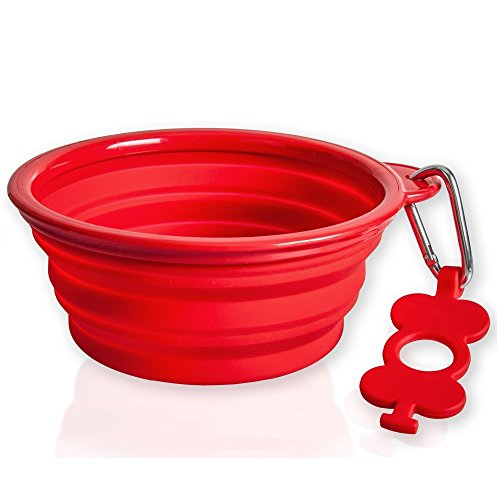 Top 10 Collapsible and Safe Pet Bowls with Reviews 2019-2020 cover image