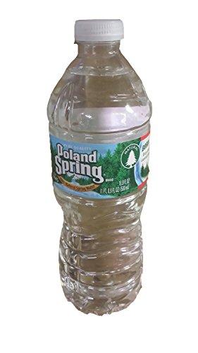 Poland Spring Bottled Water, 16.9 Oz (80)