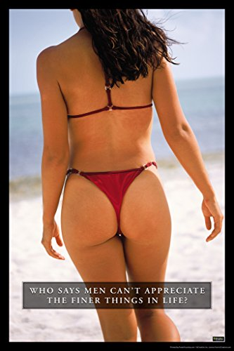 Who Says Men Cant Appreciate the Finer Things In Life Sexy Girl Humor Poster 12x18