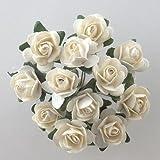 Tea Rose di carta, colore: panna (Confezione da 144)