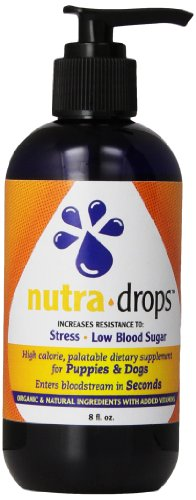 Health Extension Nutra Drops  8 Ounce