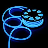 100FT Blue Flexible Neon LED Rope Light Lighting Strip Tube Indoor Outdoor Xmas Party Room Decor Commercial Use Lighting 110V