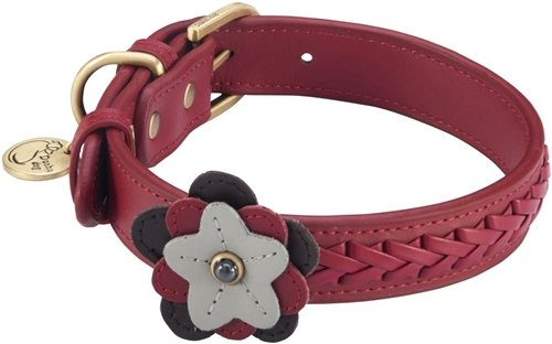 "14""-17"" Petal Wild Rose Dog Collar 1"" wide, Large"