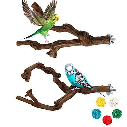 Omawrf 2 Pcs Bird Parrot Perches for Cage, Birds Stand Pole Natural Wild Grape Stick Grinding Paw Climbing Standing Cage Accessories Toy Branches for Parakeet Budgies Lovebirds Canary (Type 1)