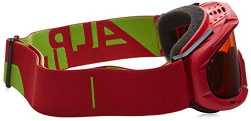 Lunettes Flex Rubis Alpina natation Double de Jamp Rouge IOqCwx