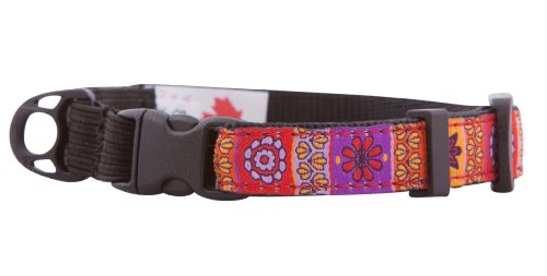 RC Pet Products 1/2-Inch Kitty Clip Cat Collar, 8 by 10-Inch, Trendy Mehndi