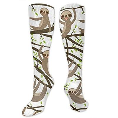 Malsjk8 Funny Kawai Sloth Set On A Branch Casual Unisex Sock Knee Long High Socks Sport Athletic Crew Socks One Size - Sloth Socks