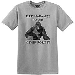 GunShowTees Men's RIP Harambe Dicks Out Gorilla Cincinnati Zoo T-Shirt, Medium, Grey