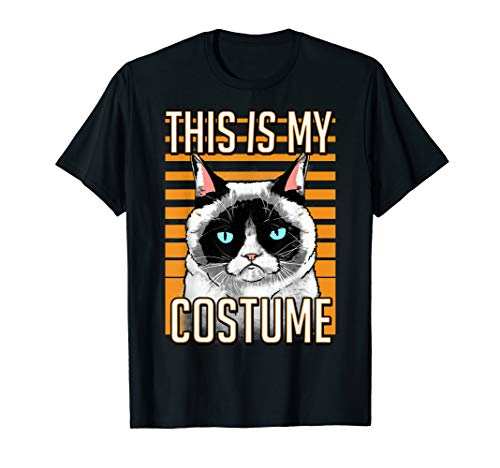 Grumpy Cat Halloween This Is My Costume Graphic T-Shirt ()