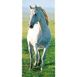Komar DM514 Ideal Decor White Horse 2-Panel Wall Mural