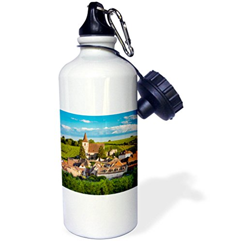 Alsace Wine White (3dRose Danita Delimont - Vineyards - Town of Hunawihr along the wine route, Alsace Haut Rhin, France - 21 oz Sports Water Bottle (wb_277369_1))