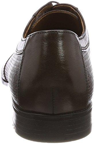 Zapatos Lloyd Cordones Marrón d para Derby Ohio moro 7 Hombre T de wwfq45O