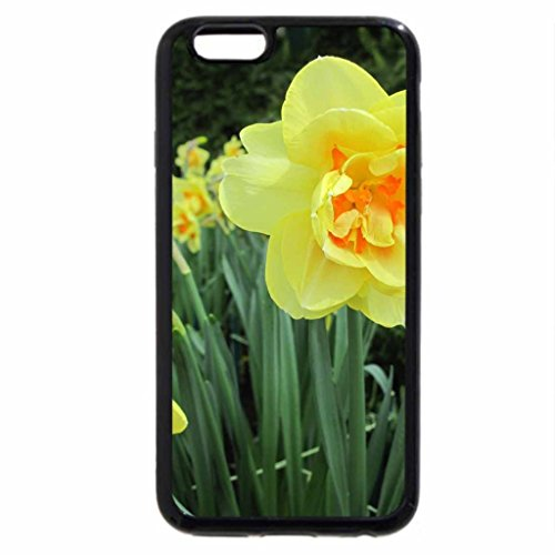 iPhone 6S / iPhone 6 Case (Black) Flowers for a cause 24 Daffodils