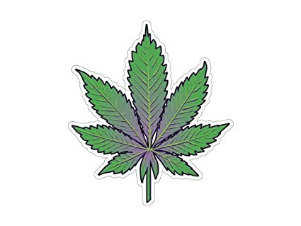 Amazon.com: Pot Leaf- Marijuana Leaf - Indica (Bumper Sticker ...