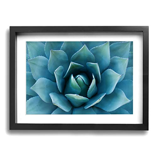 (CLLSHOME 12x16 Inches Wall Decor Toilet Bathroom Framed Art Print Picture Blue Agave Flower Wall Art for Home Decorations)