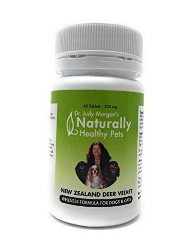 Dr. Judy Morgan's Naturally Healthy Pets New Zealand Deer Velvet Wellness Formula For Dogs & Cats (Best Deer Antler Velvet Extract)