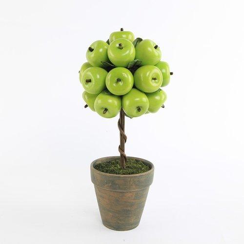Gracie Oaks Apple Desktop Succulent Topiary in (Apple Topiary)