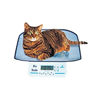 Gima – Báscula veterinaria para animales domésticos