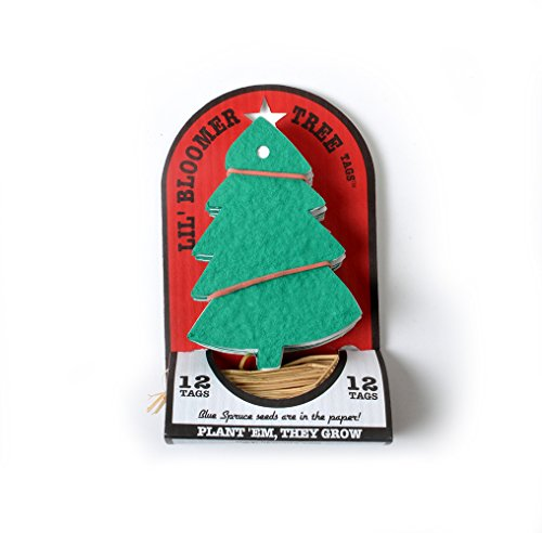 Bloomin Holiday Seed Paper - Holiday Tree Ornament - (1 Kit - 12 Two-Part Tags and 12 Raffia Ties)
