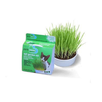 Cat Oat Garden Kit [Set of 3]