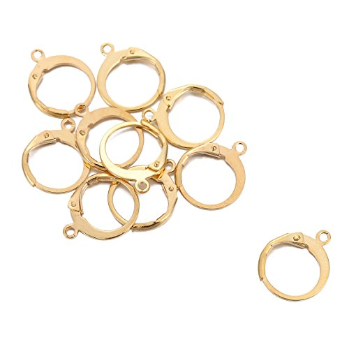 HOUSWEETY 10pcs Stainless Steel Interchangeable Leverback Earwires Lever Back Earring Connector/Findings / Yellow Gold