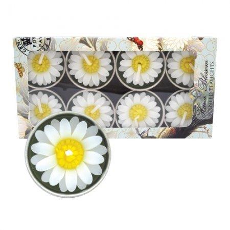 8 Handmade fairtrade Jasmin scented Daisy tealight candle gift set - Bougie parfumé e Hana Blossom