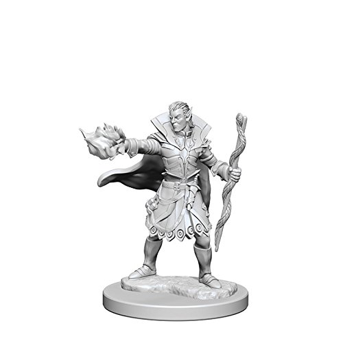 Which is the best half elf sorcerer miniature?