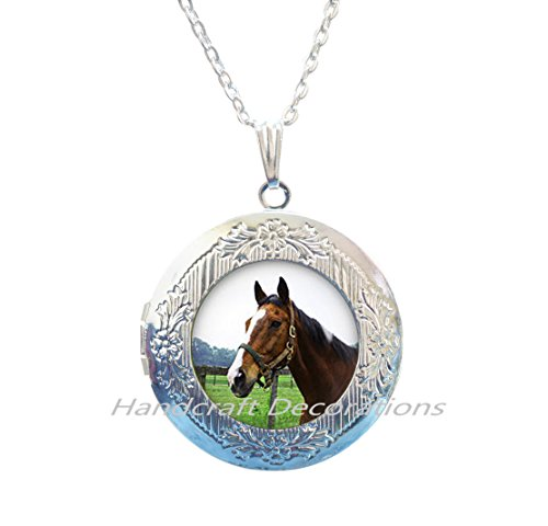 Horse Photo Locket Necklace Pet Locket Necklace jewelry Birthday gift for mom Remember Locket Necklace,girls horse Locket Necklace, girls Locket Necklace.F187
